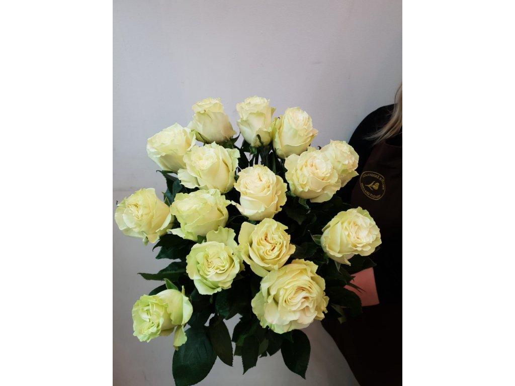 Kytice Bílá růže Mondial - od 1 ks - Holandské květiny