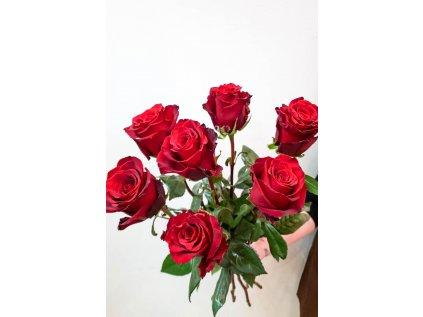Kytice Červená růže Explorer - od 1 ks - Holandské květiny